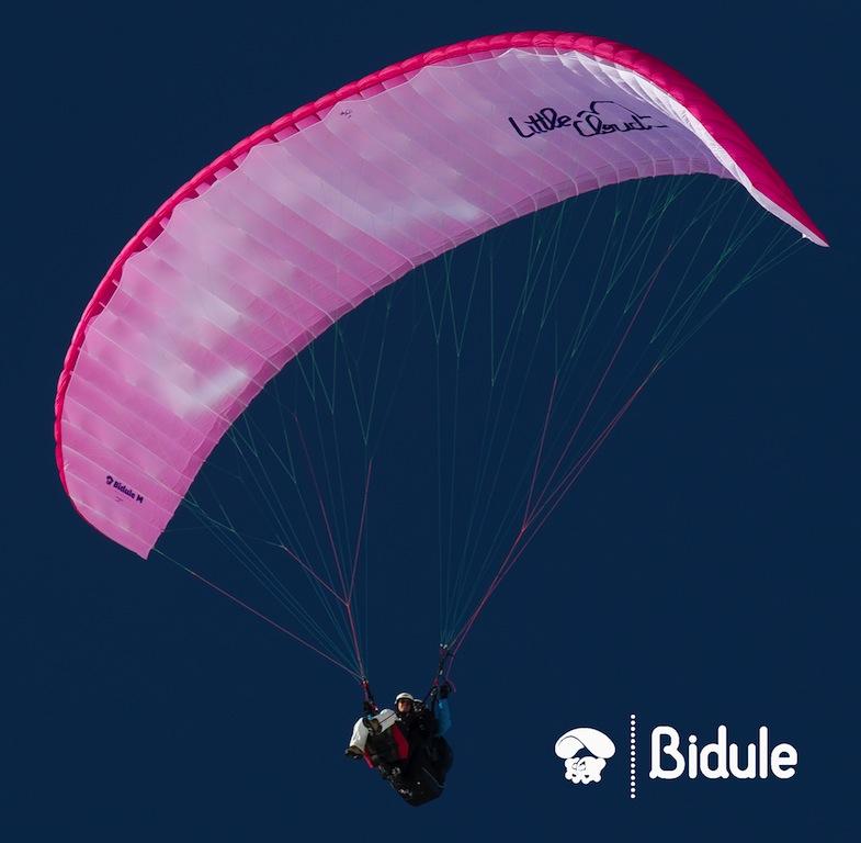 Bidule1302