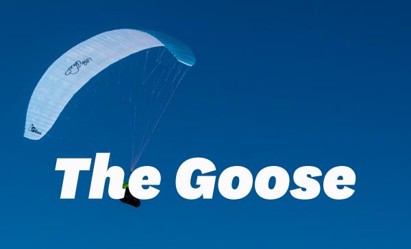 littlecloud_the-goose_00