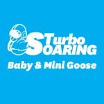 Turbo Soaring