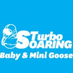 Turbo Soaring